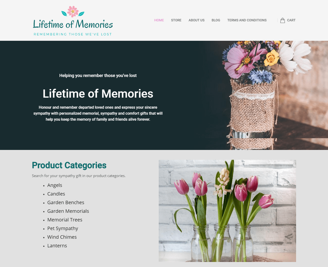 Lifetime of Memories website design windsor ontario webzooler.com