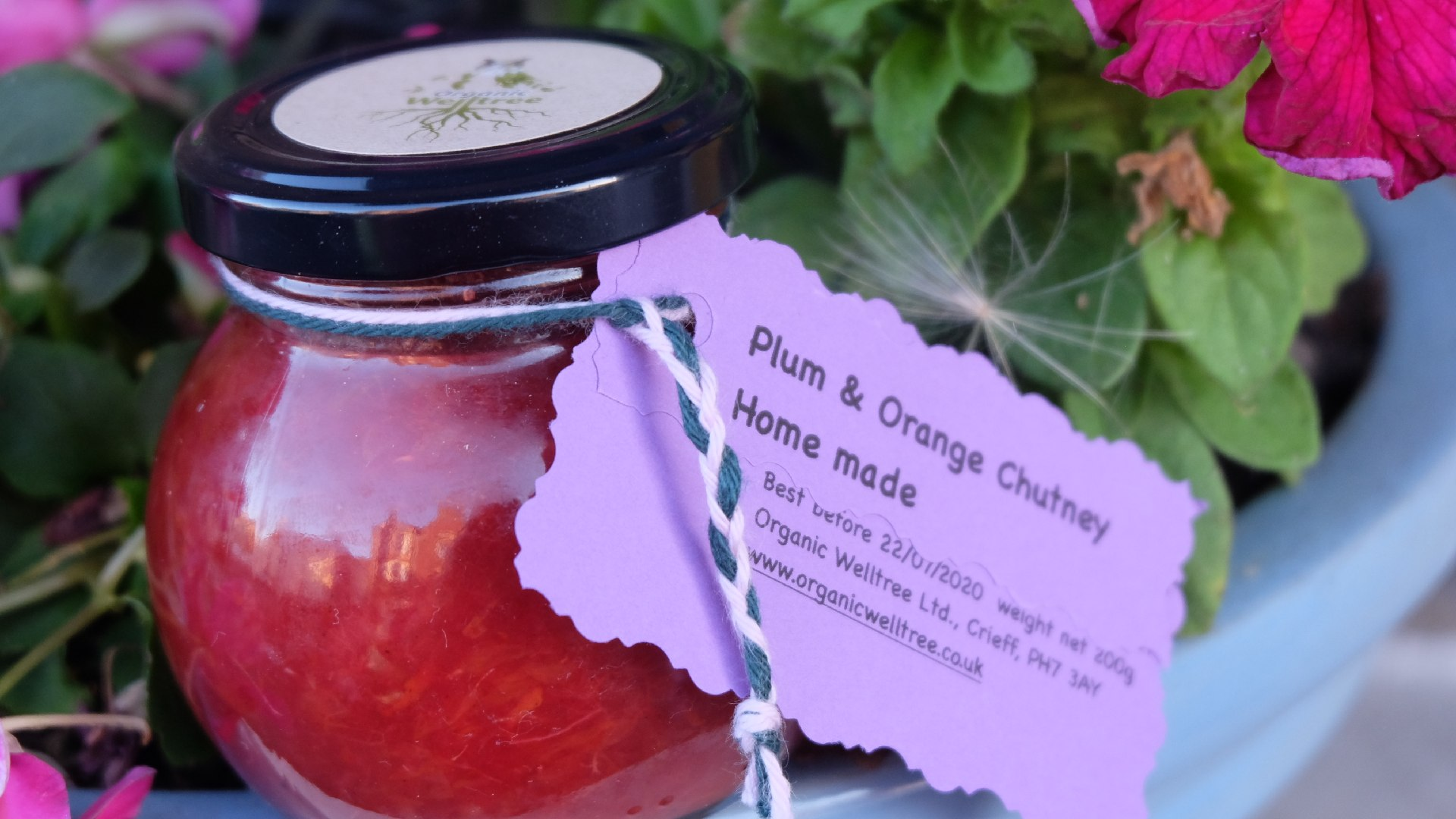 Plum and Orange Chutney