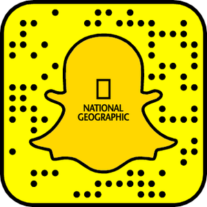 national geographic snapchat logo