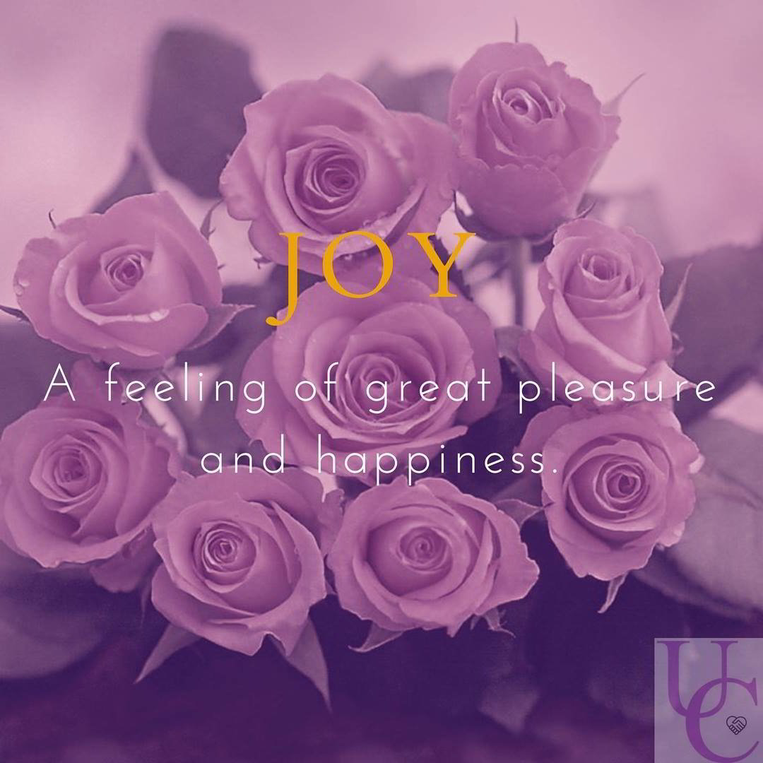 Joy – a feeling of great pleasure and happiness