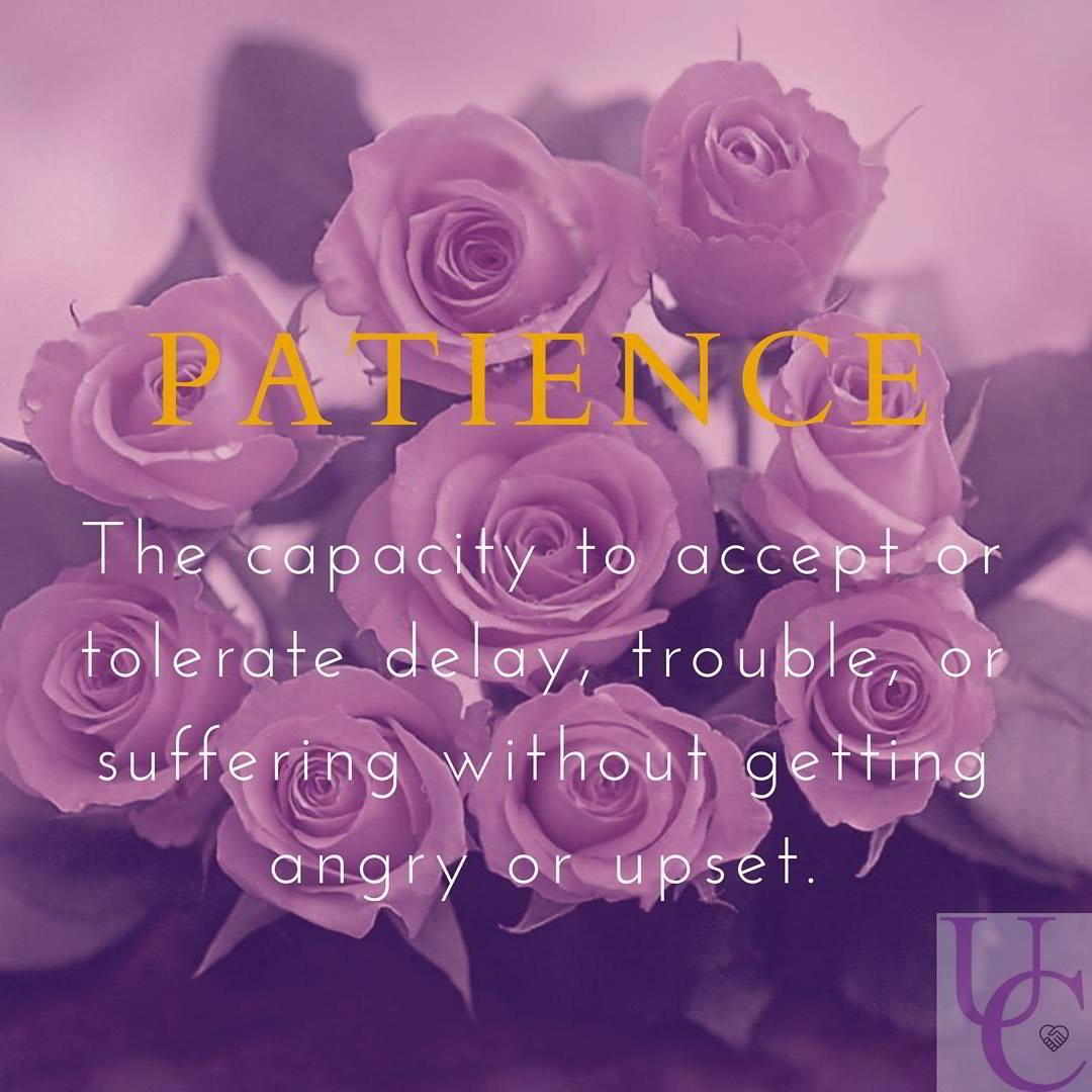 Patience – the capacity to accept or tolerate delay, trouble, or suffering without getting angry or upset