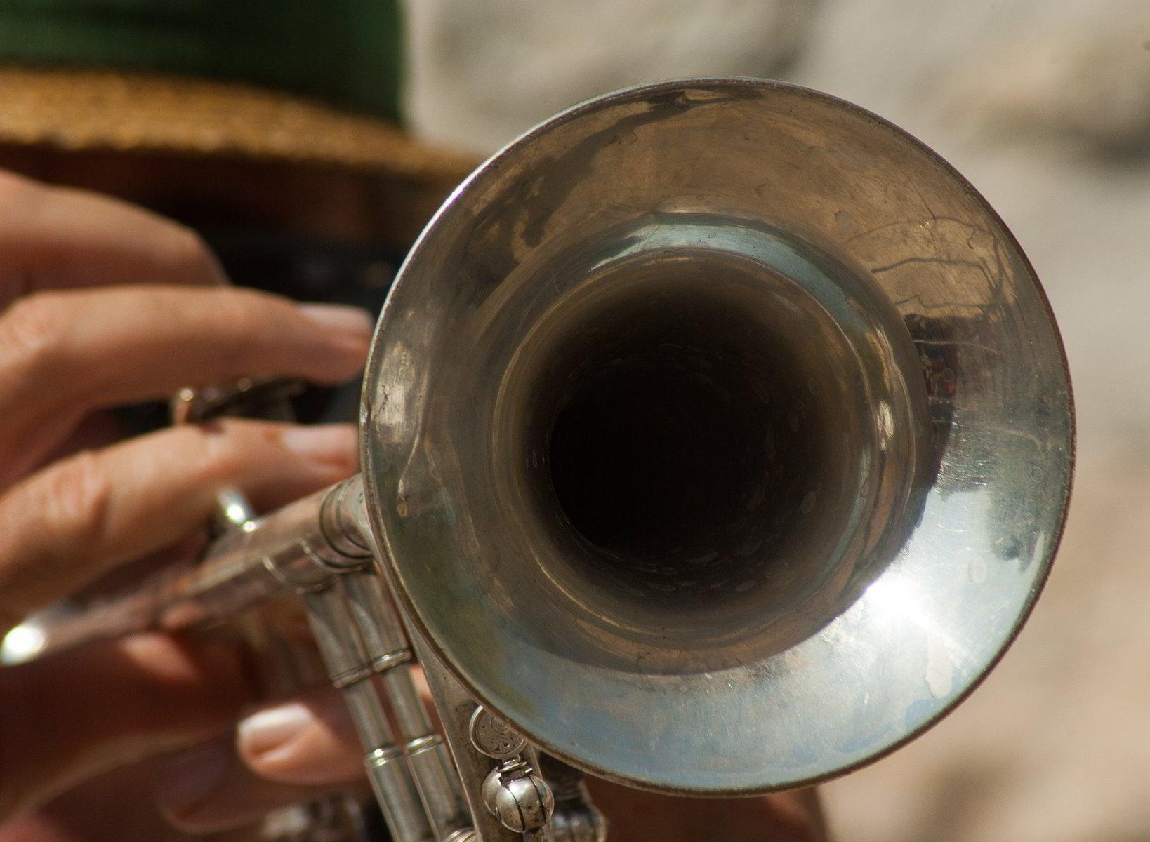 Trumpet, Trombone, French Horn & Tuba Lessons | NOLA School