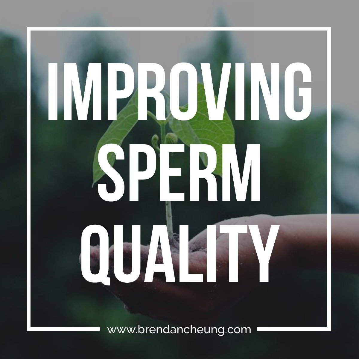 Dairy products affect sperm quality