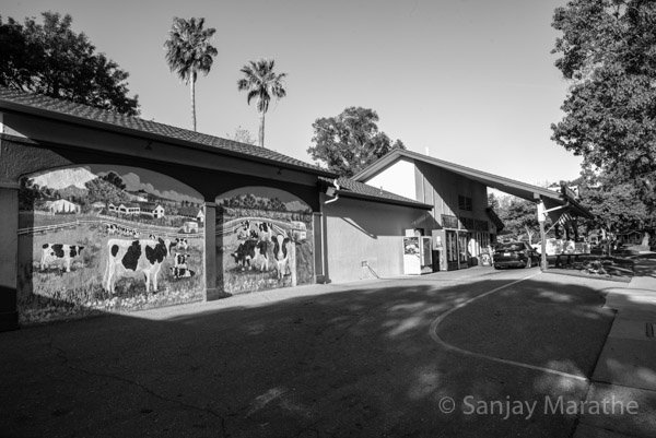 Fine art photography print of 'Meadowlark Dairy' in Black & White by artist Sanjay Marathe.