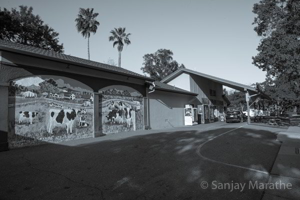Fine art photography print of 'Meadowlark Dairy' in Classic Black & White by artist Sanjay Marathe.
