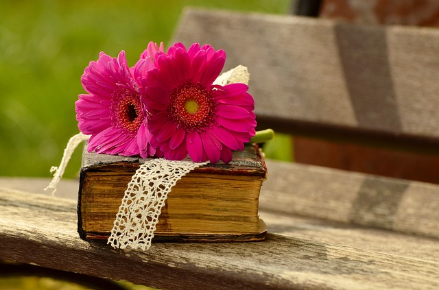 Book_with_flower_outdoors_O0FFUU