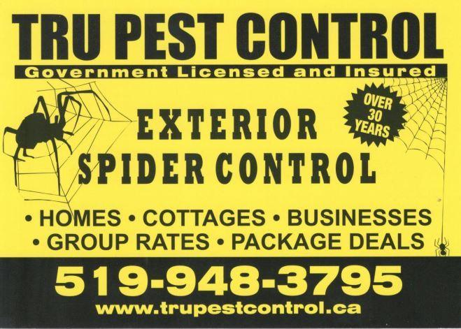 Spider Spraying Windsor Ontario