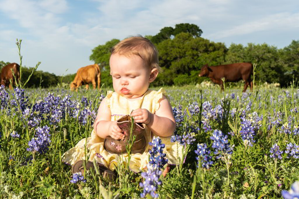 Bluebonnets Baby Central Texas Photography