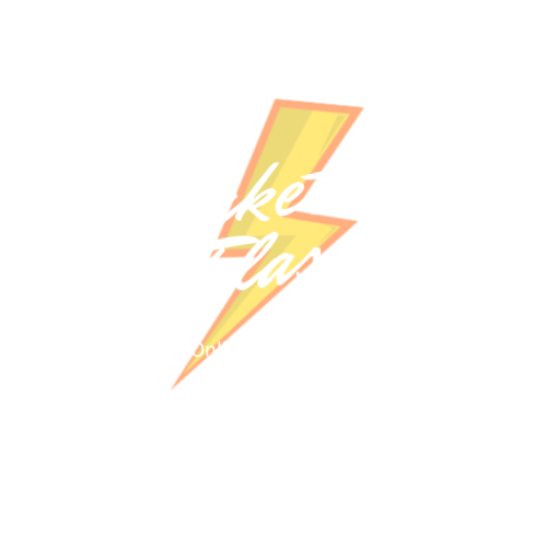 Logo Marketing Flash Online Marketing Agentur Wuppertal