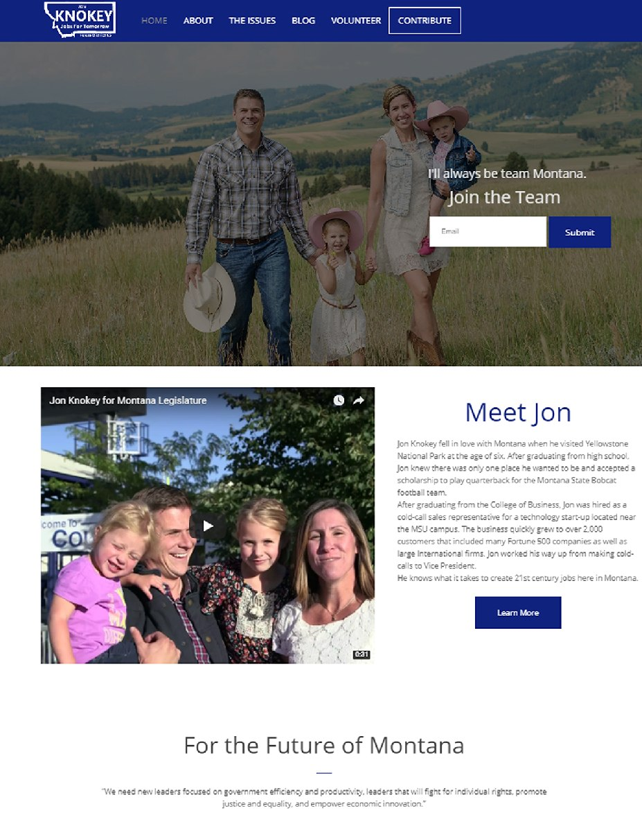 Example Professional Campaign Website